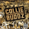 Collie Buddz (2007)