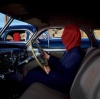 Frances The Mute (2005)