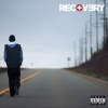 Recovery (2010)