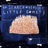 In Search of Elusive Little Comets (2011)